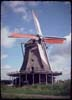 ONE WINDMILL
